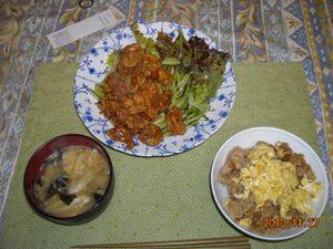 2010_11_27