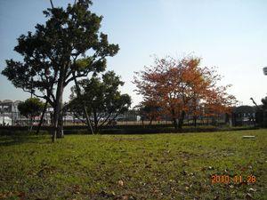 2010_11_28_02