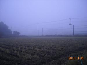 2011_11_04_01