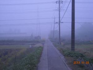 2011_11_04_02