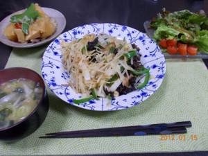 2012_01_15