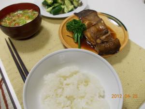 2012_04_25_01