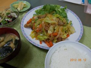2012_06_12_04