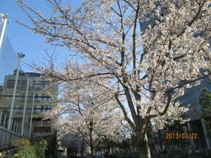 2013_03_22_01