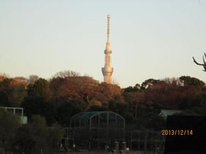 2013_12_14_18