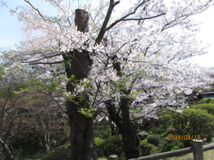 2014_04_19_12