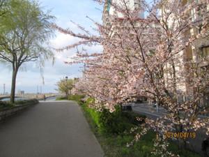 2014_04_19_14